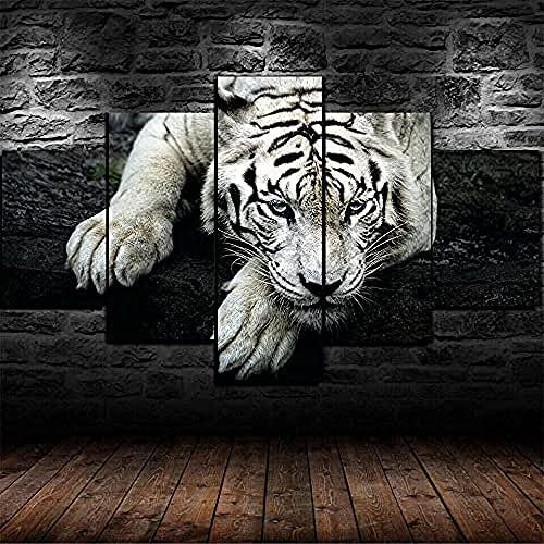 YUANJUN Pegatinas De Pared 5 Unidades Lienzo Pintura Lienzo Cuadro Pintura Habitación Decoración Impresión Cartel Arte De La Pared Arte Cuadros Tigre Blanco Animal Depredador
