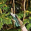 Bosch 06008B2000 EasyPrune - Cesoie potatura, Batteria Integrata, 450 Tagli per Carica, Confezione in Blister, 5.4 W, 3.6 V, Verde #2