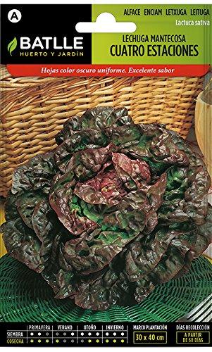 Semillas Hortícolas - Lechuga Mantecosa Cuatro Estaciones - Batlle