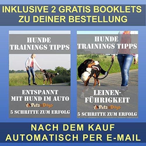 Hunde-Anschnall-Gurt inkl. extra gesichertem Profi-System-Karabiner | - 7