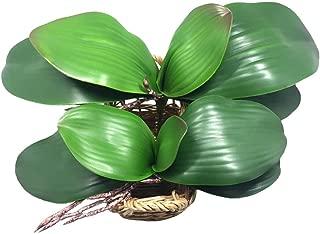 JAROWN 2 Pcs Artificial Green Phalaenopsis Orchid Leaves Real Latex Touch Plants Arrangement for Flowers Garden Bonsai Decor