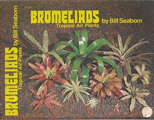 Bromeliads: Tropical Air Plants