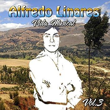 Vida Musical, Vol. 3