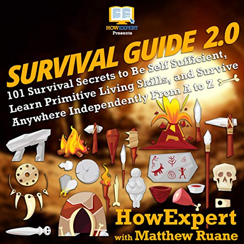 Survival Guide 2.0  By  cover art