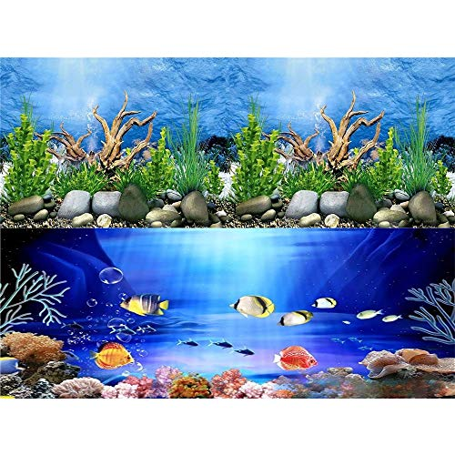 HITOP 15.5in31.5in Double Sides Aquarium Background Picture,3 Different pcs with Total 6 Options for Fish Tank (Dinosaur(15.5H31.5L))