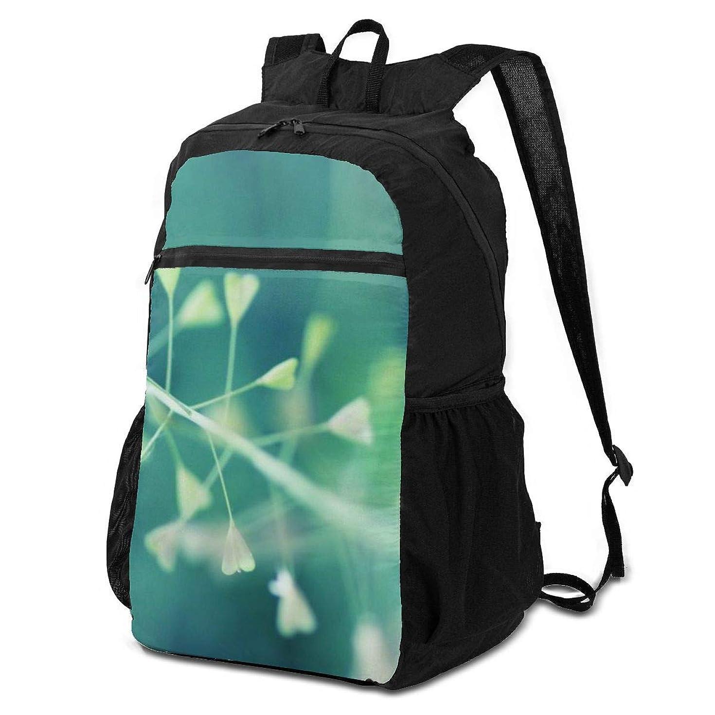 文字ピクニック機密登山リュック ザック シンプルな色 バックパック 軽量 防水 通勤 小型旅行 折りたたみ式キャンプ アウトドアバッグ