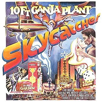 Skycatcher