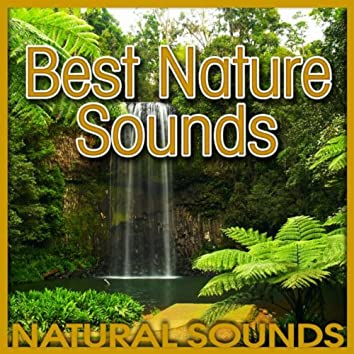 Best Nature Sounds (Nature Sound)