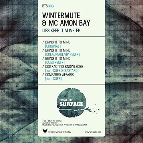 Wintermute & MC Amon Bay