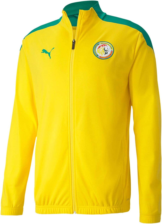 Amazon.com : PUMA Men's Senegal Football Association Stadium ...