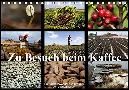 Zu Besuch beim Kaffee (Tischkalender 2019 DIN A5 quer): Der Kaffee-Kalender aus Brasilien (Monatskalender, 14 Seiten ) (CALVENDO Natur)