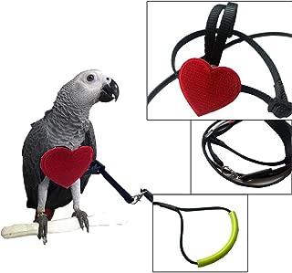 Bonaweite Adjustable Harness Leash, Pet Birds Nylon Anti-bite Training Harness Outside Walk for Parrot African Grey Cockatoo Macaw Ringneck Parakeet Cockatiel Reptile Lizar
