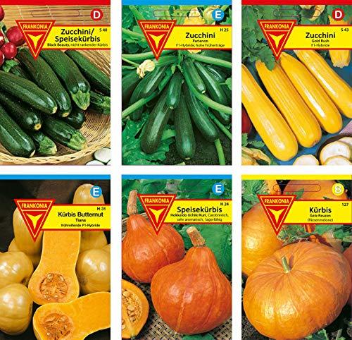 Frankonia-Samen/Samen-Sortiment / 3 Kürbissorten und 3 Zucchinisorten/Zucchini Black Beauty/Zuchini Partenon F1