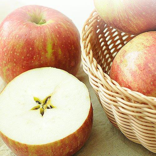 訳あり 長野県産 りんご 1kg 除草剤不使用 特別栽培農産物