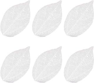Heallily Squelette Feuilles Naturelles Fleurs Séchées Spécimen 6pcs Feuilles DIY Feuilles pour Signet Cartes De Voeux Manu...