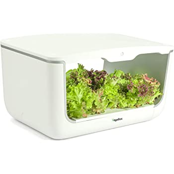 ETE ETMATE Kit de Cultivo hidropónico Sistema de Plantas ...