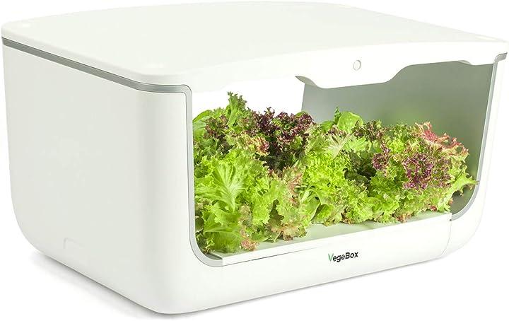 Orto da interni, illuminazione intelligente vegebox home - giardino idroponico B07RYKL2CR