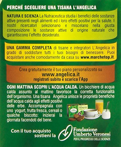 L'Angelica Tisana Linea Silhouette Caffè Verde-Tè Verde-Lavanda, 40 grammi