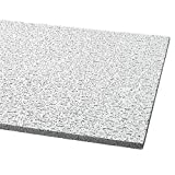 Acoustical Ceiling Tile 48'X24' Thickness 5/8', PK12