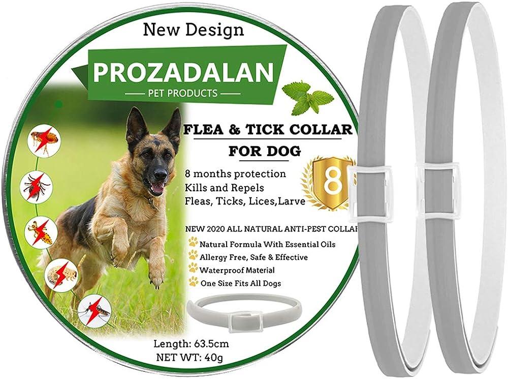 Prozadalan, collare antipulci e zecche, regolabile, impermeabile,  antiparassitario per cani di tutti i tipi