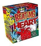 John Adams 9757 Gross Science Beating Heart Kit Nylon/A