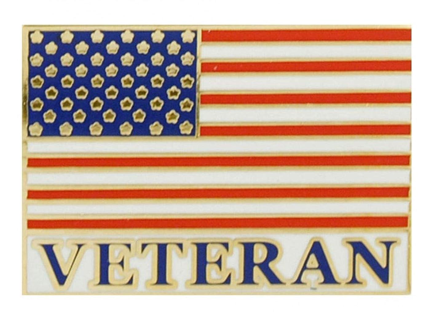 EagleEmblems P62884 Pin-USA Flag,Veteran (1'')