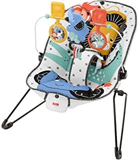 Fisher-Price Baby's Bouncer, Portable Infant Soothing Seat GNR00