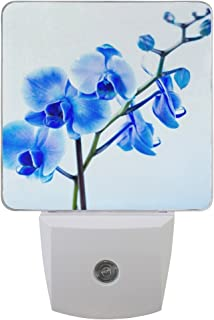 Naanle Set of 2 Blue Orchid Flower On Light Blue Floral Design Auto Sensor LED Dusk to Dawn Night Light Plug in Indoor for Adults