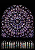 DIY 5D Kits de Pintura de Diamantes Taladro Completo Cristal Redondo Diamantes de imitación Imagen Artesanía para el hogar Decoración de Pared30x40cm,Caleidoscopio de colores,by Awenna