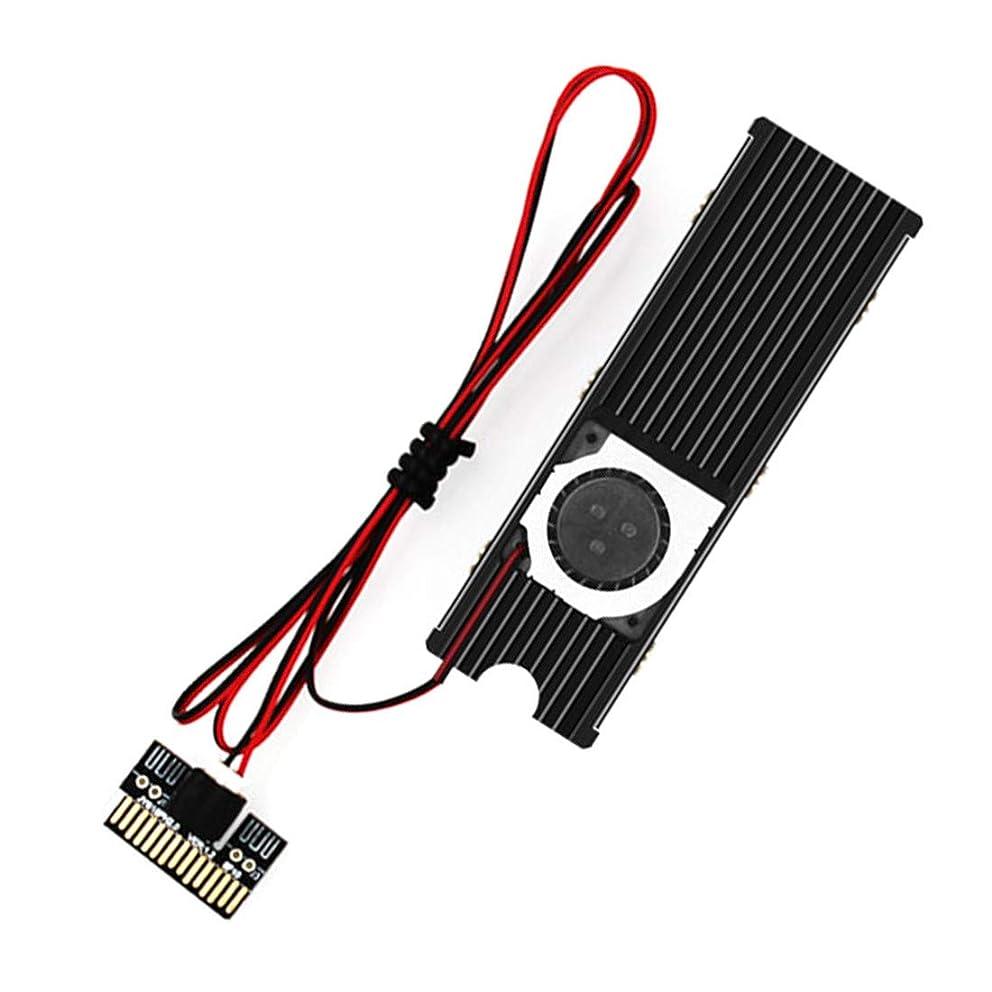 JEYI Cooling Warship Fan NVME NGFF M.2 Heatsink 2280 ssd Metal Sheet Thermal Conductivity Silicon Wafer Cooling Fan Heatsink (Black) tysmwwzmu4