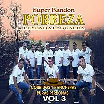 Corridos Y Rancheras Puras Perronas Vol.3