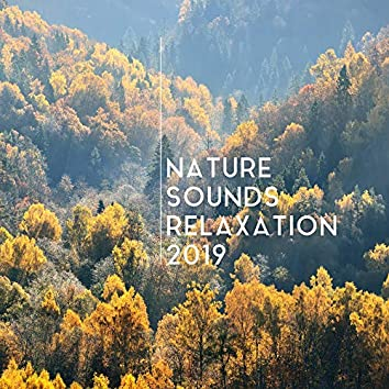 Nature Sounds Relaxation 2019: 15 Soothing New Age Songs for Perfect Relaxation After Tough Day, Stress Relief & Calming Down