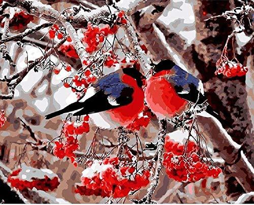 Digitaal olieverfschilderij vogel van rode fruittak, als decoratie voor kantoor thuis, voor kinderen, beginners voor het schilderen van knutselen, canvas zonder lijst, 40 x 50 cm