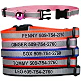 GoTags Personalized Reflective Cat Collars, Engraved Custom Cat Collar with Name and Phone, Breakaway Cat Collar with Safety Release Buckle and Bell, Adjustable for Cats and Kitten, (Blue)