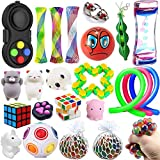 Wankko 24 Pcs Sensory Toys Set Relieves Stress & Anxiety Fidget Toy For Children Adult - Special Toys Assortment for Birthday Party Favors, Classroom Rewards Prizes, Carnival, Piñata Goodie Bag Fillers
