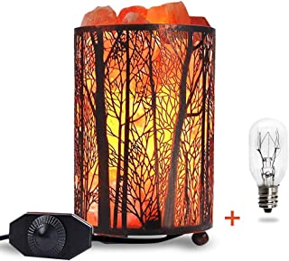 Himalayan Salt Lamp, Salt Rock Lamp Natural Night Light in Forest Design Metal Basket with Dimmer Switch (4.1 x 6.5