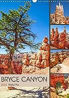 BRYCE CANYON Natur Pur (Wandkalender 2022 DIN A3 hoch): Idylle im Suedwesten der USA (Monatskalender, 14 Seiten )
