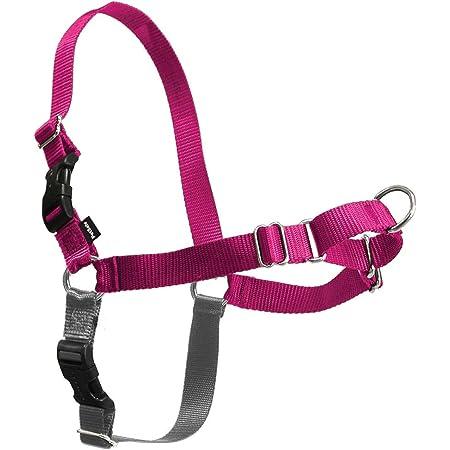 PetSafe Easy Walk Dog Harness, No Pull Dog Harness, Raspberry/Gray, Small