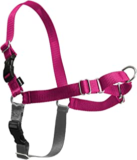 PetSafe Easy Walk Dog Harness, No Pull Dog Harness – Perfect for Leash & Harness..