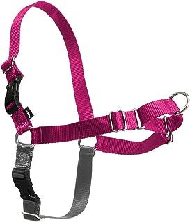PetSafe Easy Walk Dog Harness, No Pull Dog Harness, Raspberry/Gray, Medium/Large