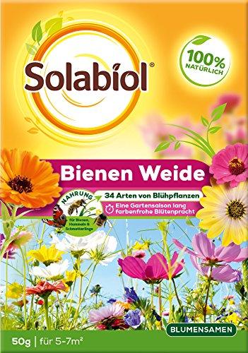 Solabiol Bienenweide, vielfältige Blumenmischung, Blumensamen für bis zu 7m² Blumenwiese, 50 g