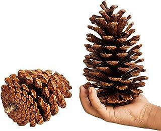 GuLL Pommes de Pin Naturelles 15cm en Forme Décorations à Suspendre Pin l'artisanat, pour Décoration de Arbre de Noël étiq...