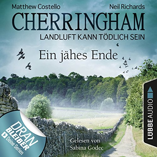 Ein jähes Ende audiobook cover art
