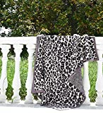 Microfiber Fluffy Leopard Throw Blanket Super Soft Cozy Lightweight Blanket for Sofa Couch Bed 51'X71' Stone Black¡