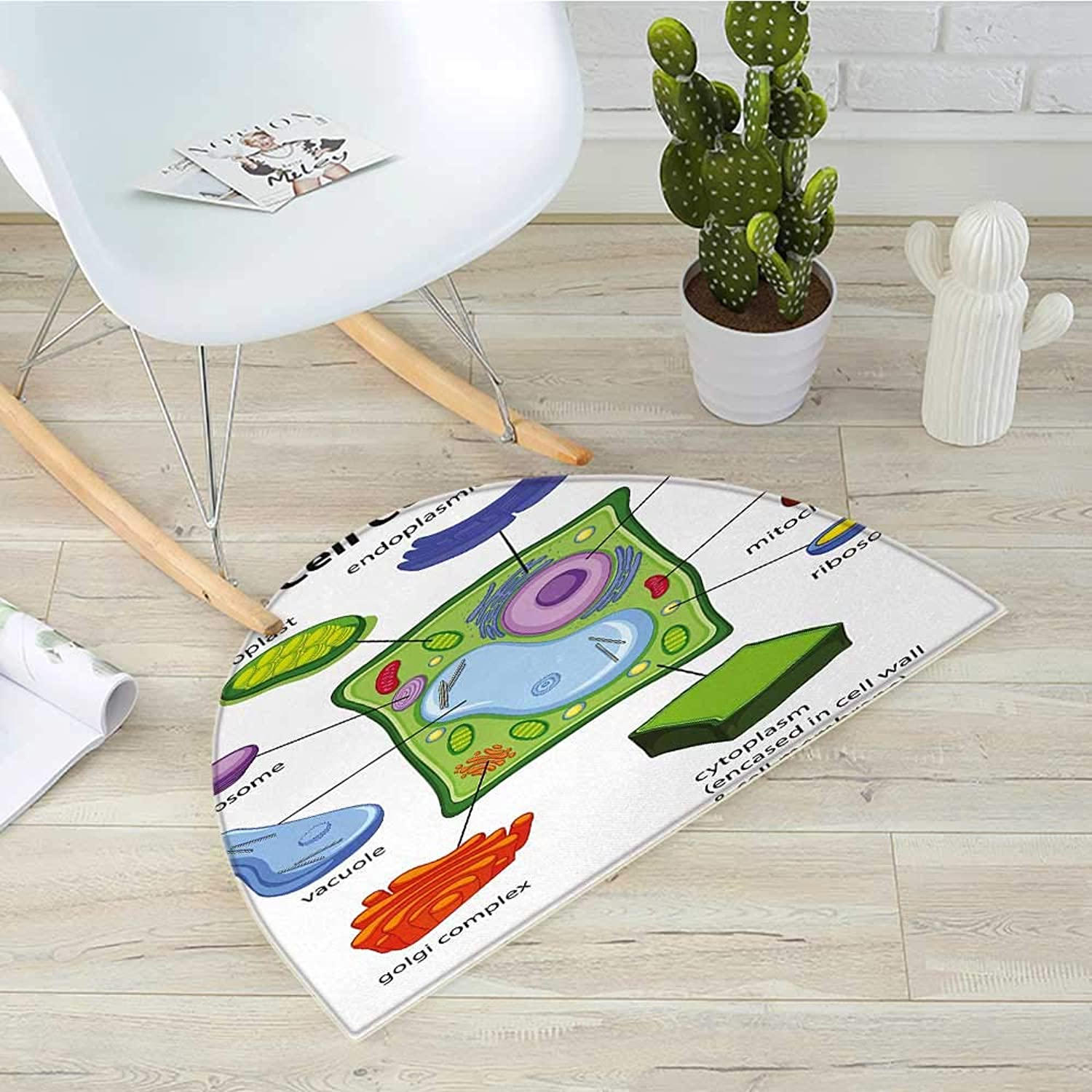 Educational Half Round Door mats Chart Showing Plant Cell Components in Cartoon Style Science Living Structure Bathroom Mat H 43.3  xD 64.9  Multicolor