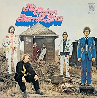 Gilded Palace of Sin by FLYING BURRITO BROTHERS (2010-11-24)