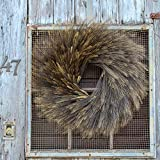 Darby Creek Trading Natural Dried Blackbeard Triticum Wheat Fall Front Door Wreath