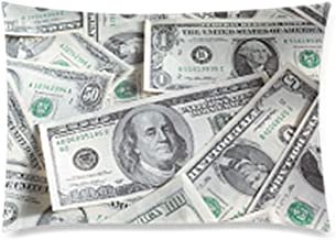 Funny US Dollar Currency Money Pillowcase, Hundreds of Dollar Bills Pillowcase - Pillowcase with Zipper, Pillow Protector Cover Cases - Size 20x30 inches
