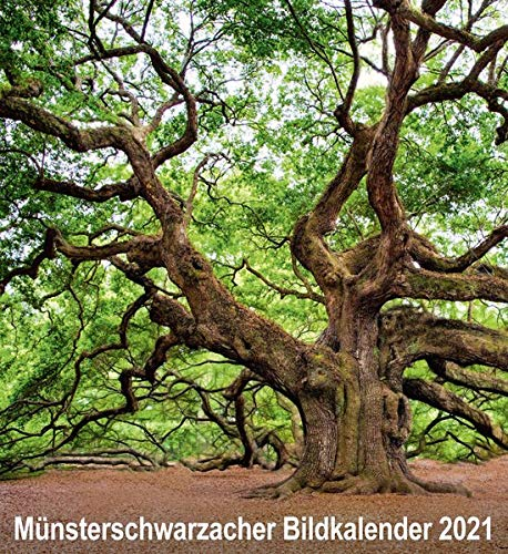 Münsterschwarzacher Bildkalender 2021 (Münsterschwarzacher Kalender)