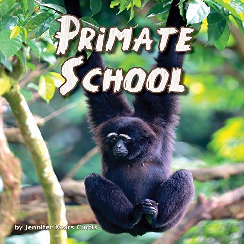 Primate School  Audiolibri